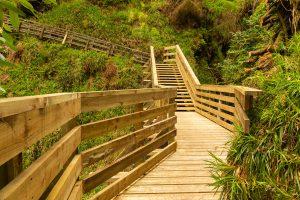 Non slip softwood walkway